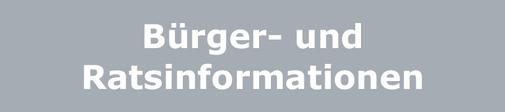Logo: Bürger- und Ratsinformationssystem